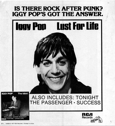 Iggy Pop - Lust For Life - Vintage Music Ad